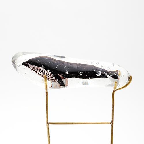 ザトウクジラの画像 p1_9