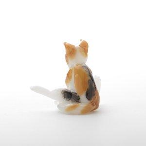 画像4: 新井克仁 「毛づくろい猫」
