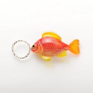 画像1: Claudia Pagel 「魚1」