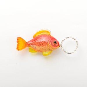 画像2: Claudia Pagel 「魚1」