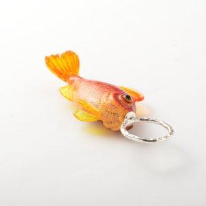 画像3: Claudia Pagel 「魚1」
